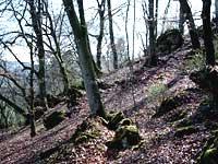 Felsen am Galgenberg